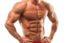 Muscle Matrix Solution download